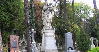 Львів компенсує 15 мільйонів гривень за зрізані дерева: у місті розширюють кладовища