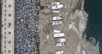 Морський слиз на Мармуровому морі: як Туреччина бореться з екокатастрофою