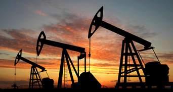 """Достатньо власних газових родовищ, – Рябцев розповів, як злізти з російської """"газової голки"""""""