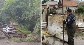 Поваленные деревья и затопленные базы отдыха: в Мариуполе и Кирилловке бушует стихия