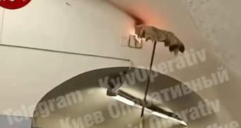 В киевском метро тушили пожар шваброй: видео