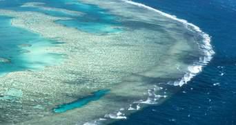 Великий Бар'єрний риф внесуть до списку ЮНЕСКО: сподіваються захистити від змін клімату