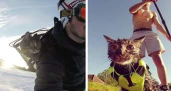 Лижі, гори, парашути: історія кішки, яка живе на повну – вражаючі фото