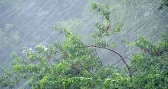 Після Львова потужні зливи та шквальний вітер накрили Рівне: відео негоди