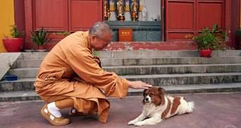 Буддистський монах присвятив життя тваринам і вже 27 років рятує чотирилапих