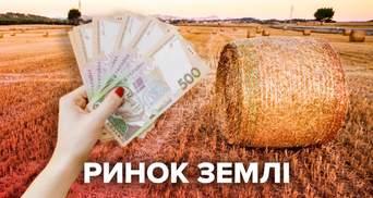 Рынок земли открылся: сколько заработают владельцы земли и государство