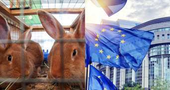 Заборонити утримувати свійських тварин у клітках: ЄС може внести зміни з 2027 року