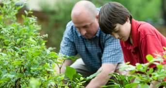Лунный посевной календарь на июль 2021 огородника и садовода