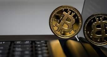 Американский сенатор призывает всех покупать биткоин: почему она взволнована обвалом рынка