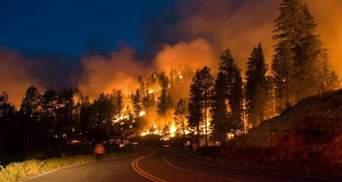 В России бушуют масштабные лесные пожары: известно о первой жертве
