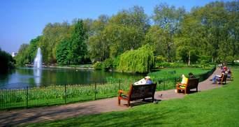 У Києві створили інтерактивну карту скверів, парків і зелених зон