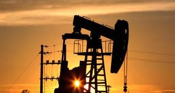ОПЕК+ и ОАЭ достигли компромисса: какими будут объемы добычи нефти