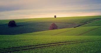 Оренда землі: як правильно укласти договір, – поради Мін'юсту
