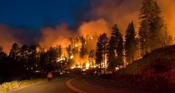 Лісові пожежі в Росії охопили понад мільйон гектарів: влада ввела режим надзвичайної ситуації