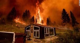 У США вирують масштабні пожежі: вогонь уже знищив сотні тисяч гектарів лісу