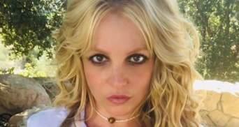 Экс-охранник Бритни Спирс заявил, что певицу поили наркотиками и противозачаточными
