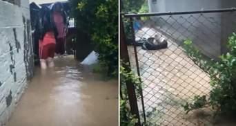 Люди стояли по колени в воде: ужасные последствия непогоды на Закарпатье – фото, видео