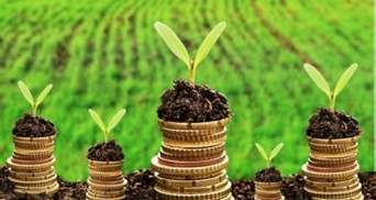 Відкриття ринку землі: скільки вдалось укласти угод від старту програми