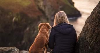 Вірний друг: чому собаки стають чудовими домашніми улюбленцями