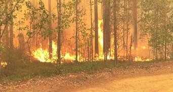 У Росії оголосили режим надзвичайної ситуації через лісові пожежі: відео