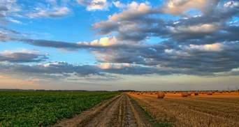Ціна землі в Україні: де найвища і найнижча