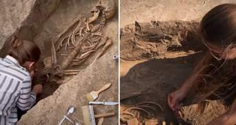 Археологи раскопали древнее захоронение на Мамай-Горе в Запорожской области: видео