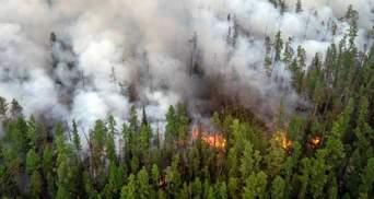 Лісові пожежі з Росії перекинулися на сусідню Фінляндію