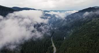 """В сети показали, как Черногору """"омывают"""" волны облаков: волшебное видео карпатского """"моря"""""""