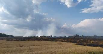 В Черниговской области вспыхнул пожар на пшеничном поле