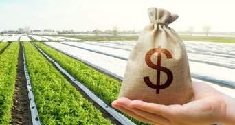 Ринок землі: в яких областях продали найбільше землі від початку держпрограми