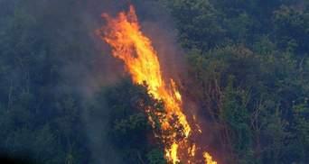 Тепер і на Сицилії: пожежі в Італії поширились на інші регіони