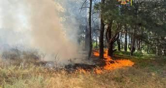 Пожежа на Хортиці: директор заповідника назвав ймовірну версію займання