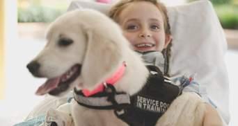 Втратила рідних та паралізувало після аварії: як цуценя повернуло 6-річній дитині посмішку