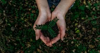 Україна почала жити в борг у природи, – голова Держекоінспекції