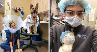 День ветеринара в Україні: найкумедніші фото лікарів та хвостатих пацієнтів