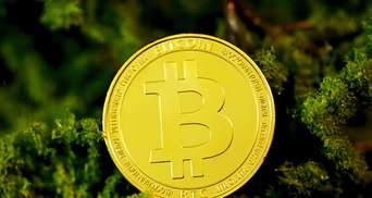 Біткойн коштуватиме 100 тисяч доларів, – аналітик Bloomberg