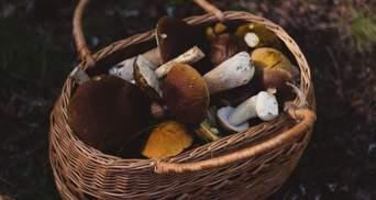Если отравились грибами: что нужно сразу сделать и как избежать