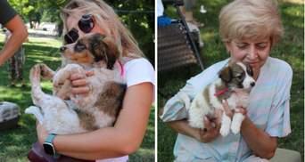 """У центрі Вінниці роздавали тварин: як пройшов традиційний """"Хвіст-фест"""" – яскраві фото"""