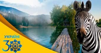 Від Буковеля до Асканії-Нової: найпопулярніші сучасні місця для відпочинку в Україні
