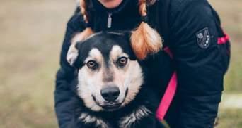 Во Львове напали на известного волонтера, которая занимается животными