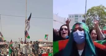 День независимости в Афганистане: люди снимают флаги талибов и вывешивают национальные