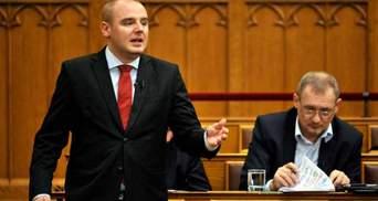 Ексдепутат з Угорщини, впійманий на кордоні України, уник покарання за контрабанду