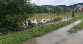 Загроза підтоплень: у ДСНС попередили про підвищення рівня води в річках на Заході