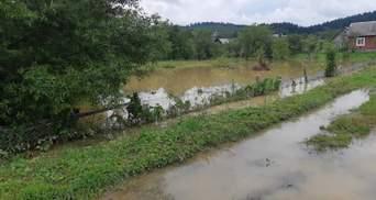 Угроза подтоплений: в ГСЧС предупредили о повышении уровня воды в реках на Западе