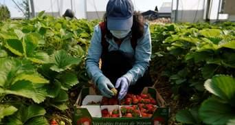 Заробітки за кордоном: поради експертів щодо недобросовісних компаній-посередників