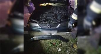 На Львовщине дотла сгорела припаркованная машина: фото с места пожара