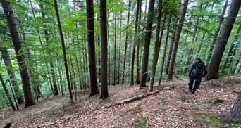 Пошел за грибами и исчез: на Буковине 9 дней ищут мужчину
