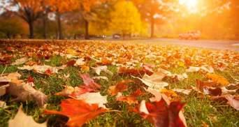 Украинские песни про осень: атмосферная подборка