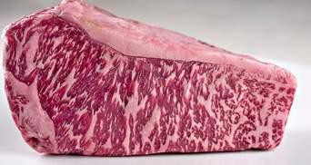 Японські вчені надрукували шматок яловичини на біологічному 3D-принтері