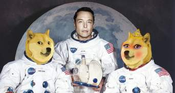 "Нова фаворитка Ілона Маска: ""дружина"" Dogecoin виросла на 3000% за день"